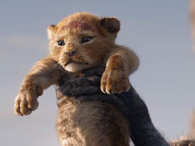 Novo 'O Rei Leão' entra em cartaz no cinema de Ariquemes, RO