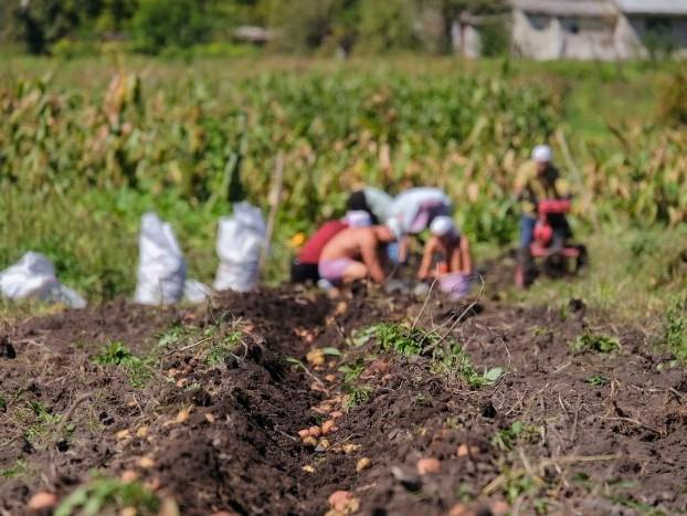 Os 13 agricultores inocentes presos por Sergio Moro