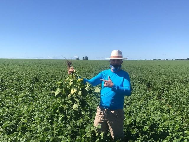 Gente do campo: pesquisa e insistência fizeram agricultor se tornar referência na produção de feijão no oeste da Bahia