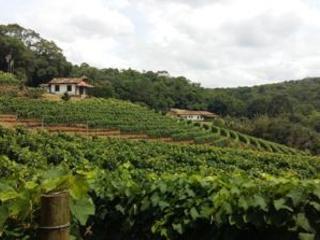 Aproveite as férias para conhecer a cidade de São Roque