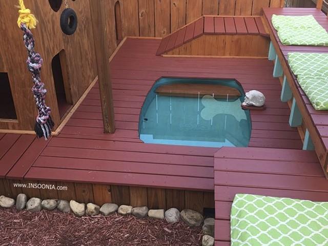 Homem transforma quintal de sua casa em playground para seus cachorros