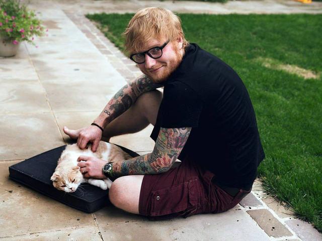 Juiz dos Estados Unidos ordena que Ed Sheeran responda a acusação de plagiar Marvin Gaye