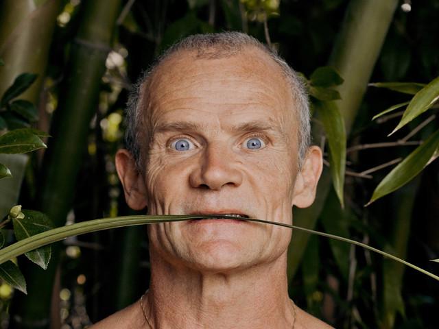 Em biografia, Flea narra infância de drogas até a criação do Red Hot Chili Peppers