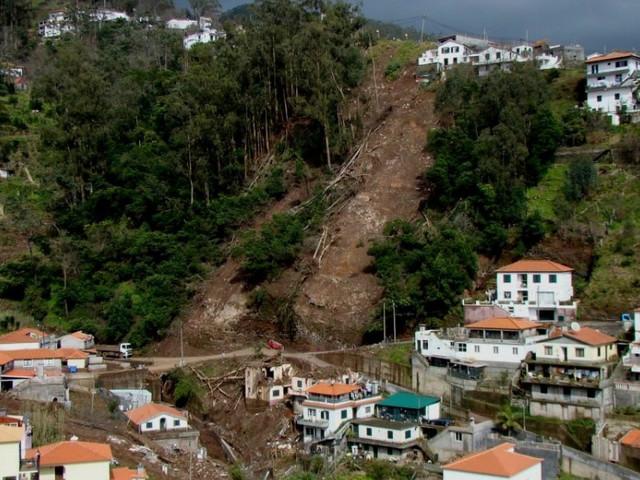 Funchal Forte pretende dar maior atenção ao ordenamento do território do Município