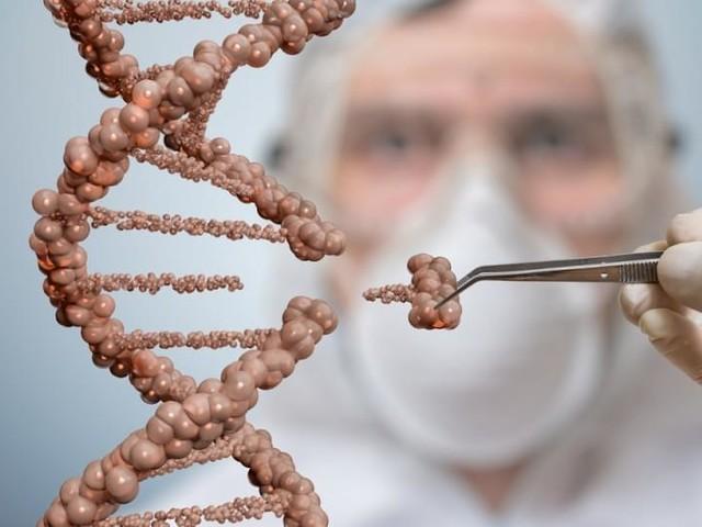 Cientistas descobrem célula que pode ser a cura para vários tipos de câncer