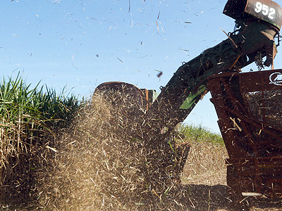 Aumento de tributo deve impulsionar vendas de etanol
