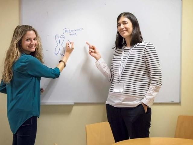 Científicos españoles dan el primer paso para frenar un frecuente y agresivo tumor cerebral