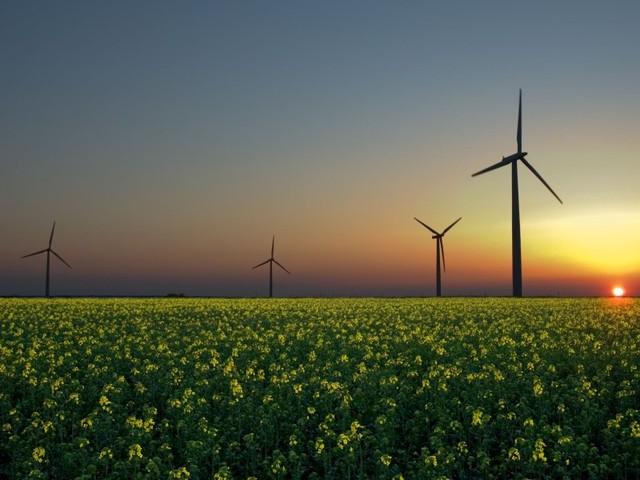 Portugal entre os quatro países europeus mais próximos de atingir metas para renováveis