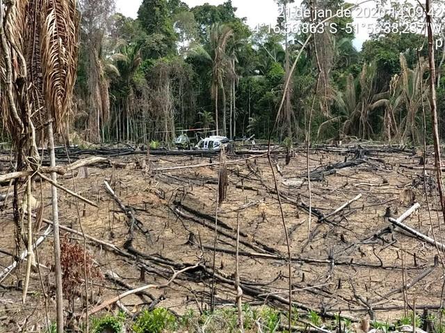 Em janeiro, MPF recomendou destruição de equipamentos usados por grileiros em terra indígena onde antropólogo foi preso no Pará