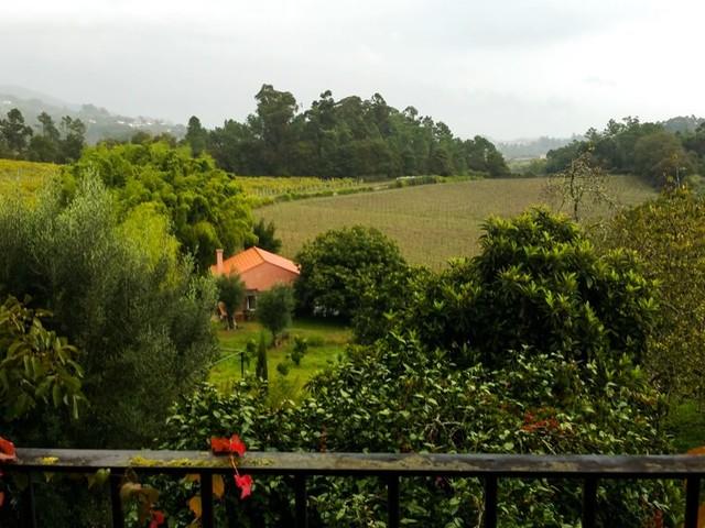 Quinta do Ameal: hospedagem de sonho em Ponte de Lima (bônus: vinhos espetaculares!)