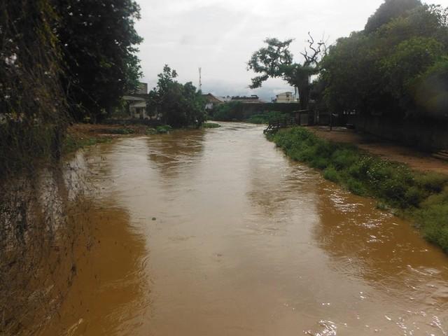 Forte chuva derruba árvores e interdita RJ-116, em Miracema, por três horas