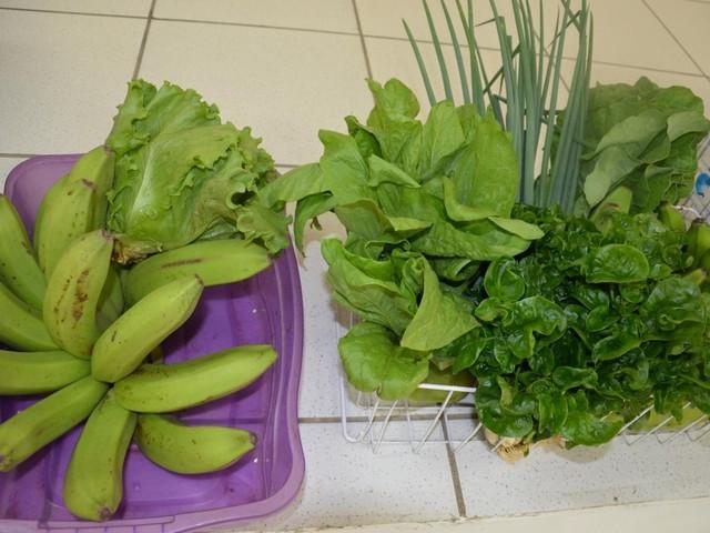 Cerca de 1 mil famílias vão receber alimentos da agricultura familiar em Ariquemes, RO