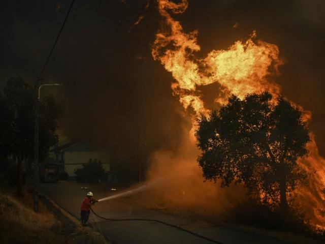 Incêndios Florestais: Siga os conselhos da GNR para os evitar