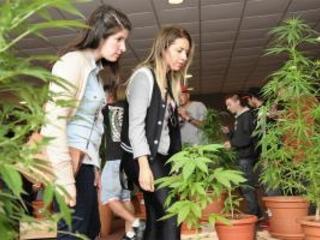 Uruguai recebe Expo Cannabis
