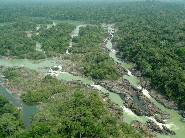 Balanço oficial de desmatamento da Amazônia confirma dados de sistema de alerta; entenda
