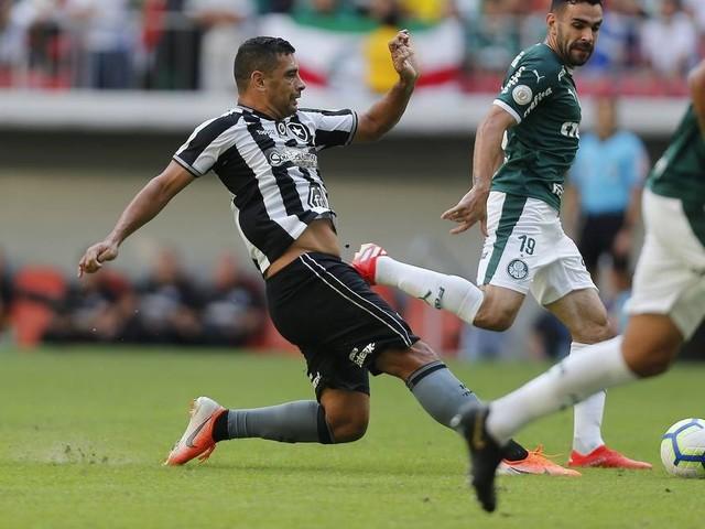 Botafogo tenta, mas não segura o Palmeiras no Mané Garrincha