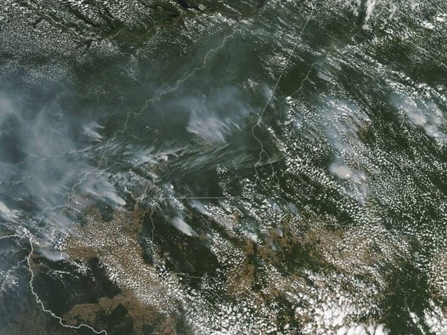 Primeiro-ministro do Canadá endossa discurso de Marcon e autoridades internacionais criticam queimadas na Floresta Amazônica