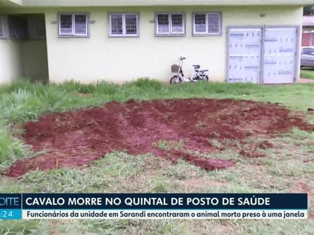 Funcionário de autarquia enterra cavalo em terreno de posto de saúde, em Sarandi