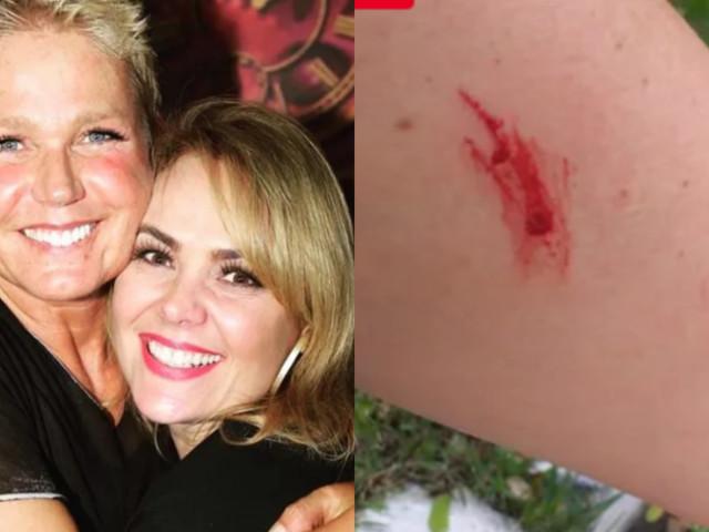 Após falsa acusação de agressão, ex-Paquita de Xuxa toma atitude inesperada e deixa apresentadora apavorada