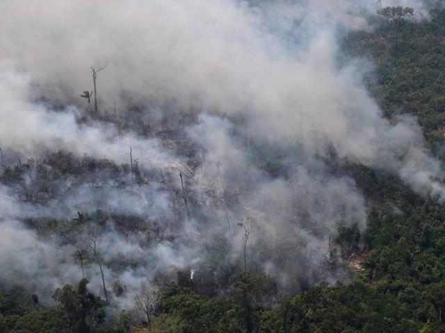 Instituto da Amazônia: 'Incêndios são causados pela ação humana'