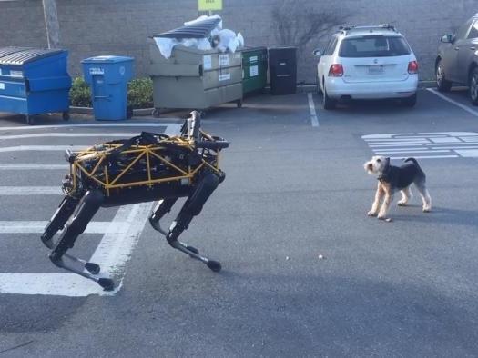"""Robôs quadrúpedes: comparamos três """"caninos"""" de peso!"""