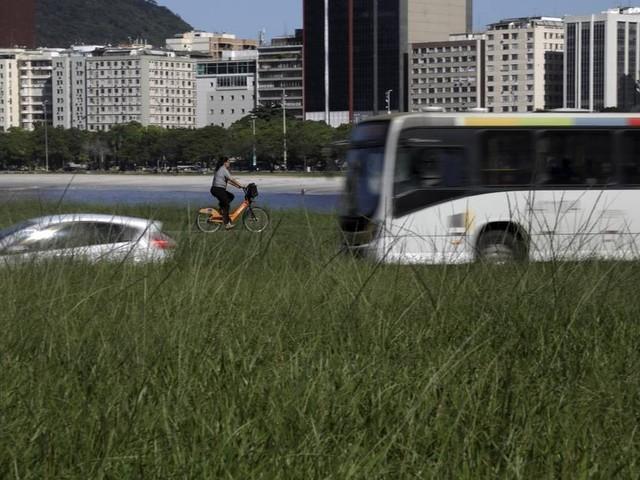 Um jardineiro infiel da obra de Burle Marx, prefeitura descuida do Parque do Flamengo