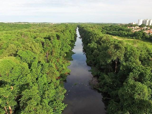 Rios cearenses não alcançam boa qualidade da água, diz levantamento