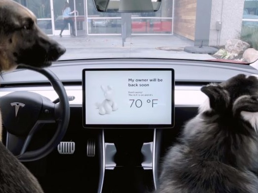Tesla atualiza software de seus carros e adiciona modo cachorro