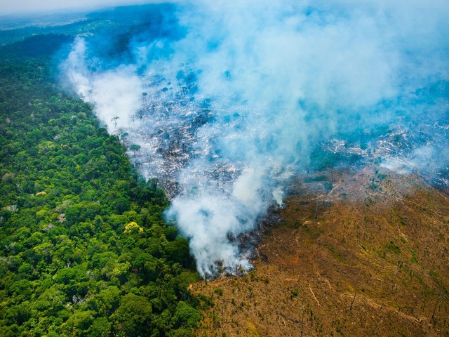 Coordenação da regularização fundiária passa a ser feita por Conselho da Amazônia, diz ministro Ricardo Salles