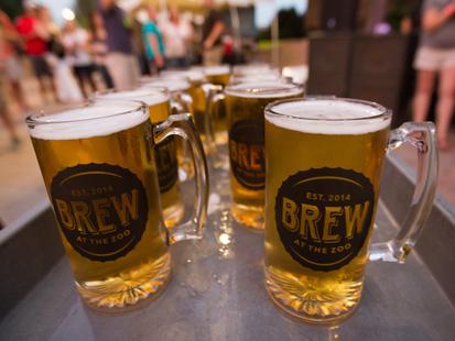 5 festivais na Flórida que os cervejeiros não podem perder!