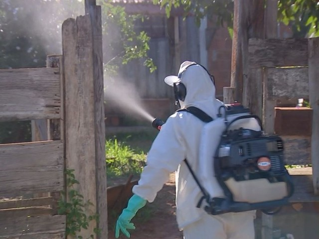 Dengue: Bauru tem mais de 6 mil casos confirmados em 2019