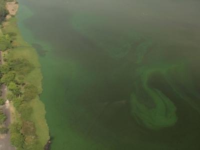Companhia estadual | Cedae é investigada por despejo de esgoto in natura em lagoas do Rio