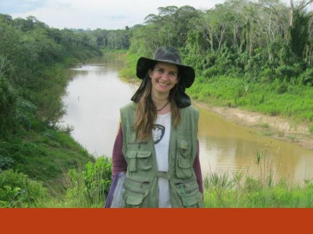 """É preciso mostrar que a Amazónia """"tem valor de pé"""", antes que seja tarde"""