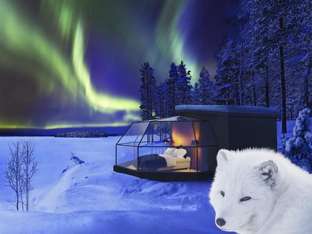 Meta de vida: Ver a aurora boreal em um iglu de vidro na Finlândia