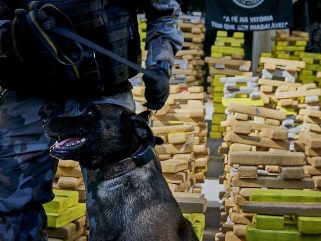Police in Rio de Janeiro Conduct Largest Ever Drug Bust