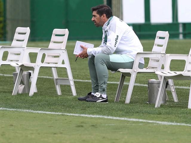 Saiba tudo sobre o Palmeiras para o duelo decisivo contra a Ponte Preta
