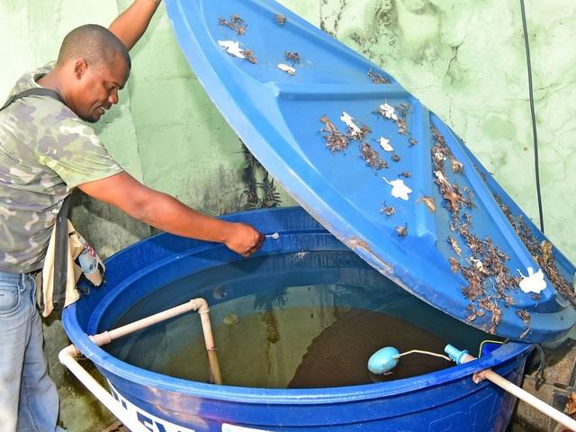 São Luís registra queda de 68% em casos de zika e chikungunya, diz Prefeitura