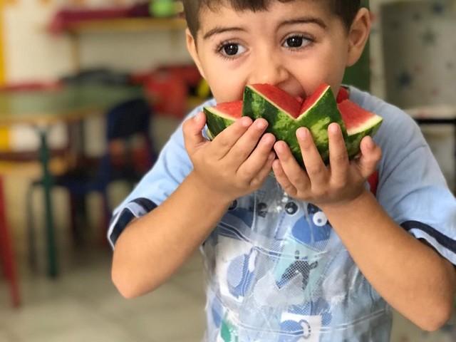 Merenda das escolas de Florianópolis são preparadas com alimentos orgânicos e acompanhamento de nutricionistas