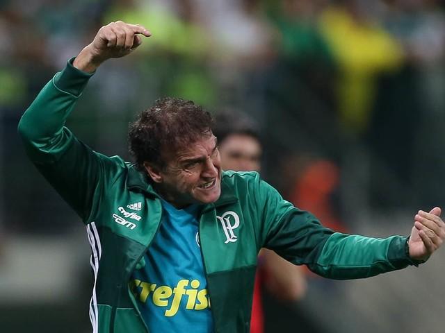 Luxa será 14º a dirigir o Palmeiras no Allianz: veja lista completa