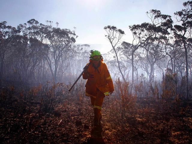Incêndios na Austrália já causaram 29 mortos