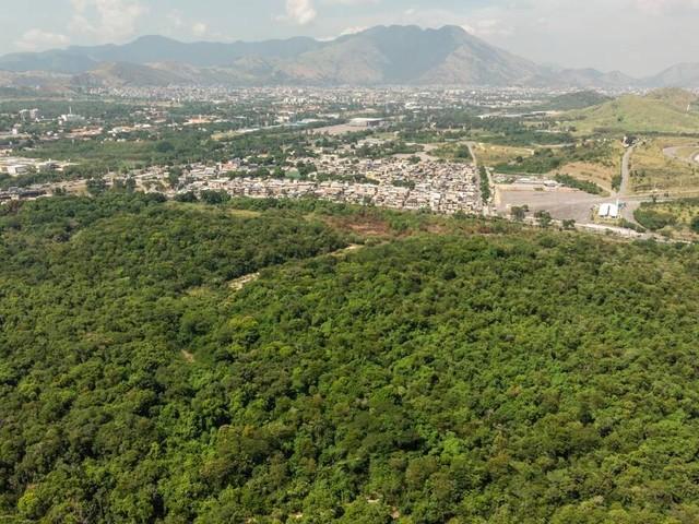 Justiça suspende contratação de consórcio do autódromo até apresentação de relatório ambiental