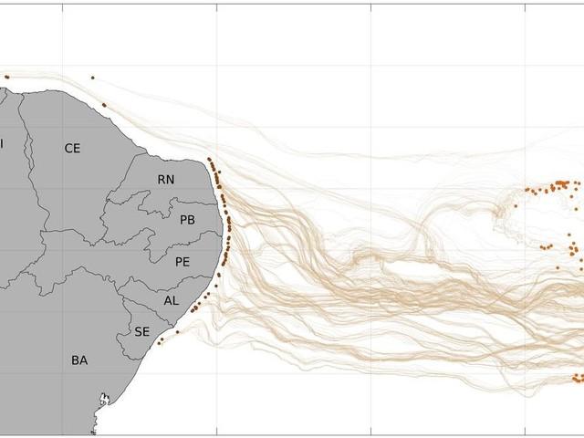 Cientistas da UFRJ determinam área mais provável de origem do óleo no NE