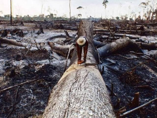 Itamaraty pede que embaixadas defendam política ambiental do Brasil nas redes