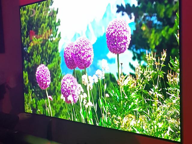 LG lança novas TVs OLED no Brasil (incluindo um sonho de consumo inatingível)