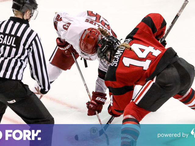 Former pro ice hockey player detained for $700,000 Bitcoin fraud