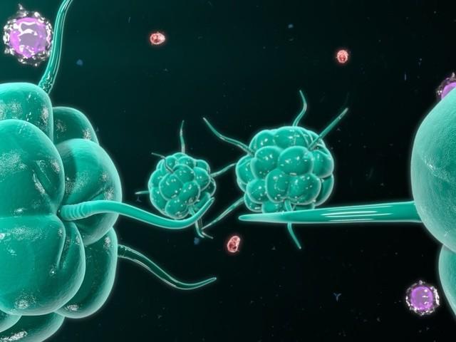 University of São Paulo With new Laboratory That Identifies Emerging Diseases