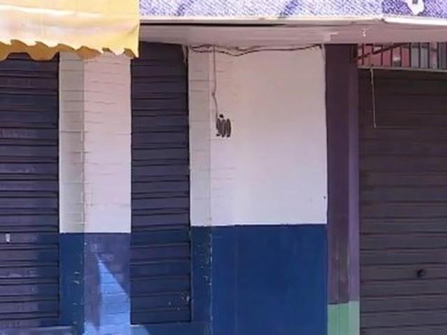 Coronavírus e comércio: mais de 600 estabelecimentos de Uberaba foram fiscalizados, diz Prefeitura