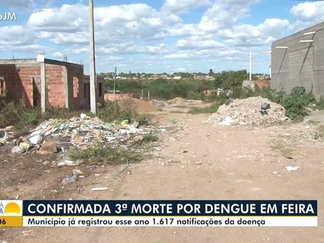 Nº de mortes por dengue em Feira de Santana sobe para 3 em 2019; 600 casos da doença já foram confirmados