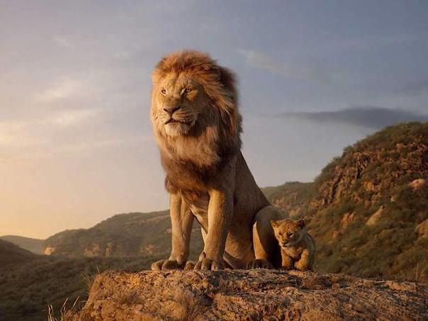 """""""O Rei Leão"""" é uma maravilha técnica, mas não comove"""