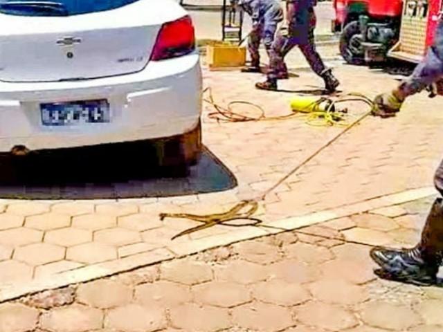 Cobra de mais de um metro é achada dentro de carro em pátio de faculdade